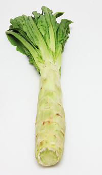 Chinese celtuce stem