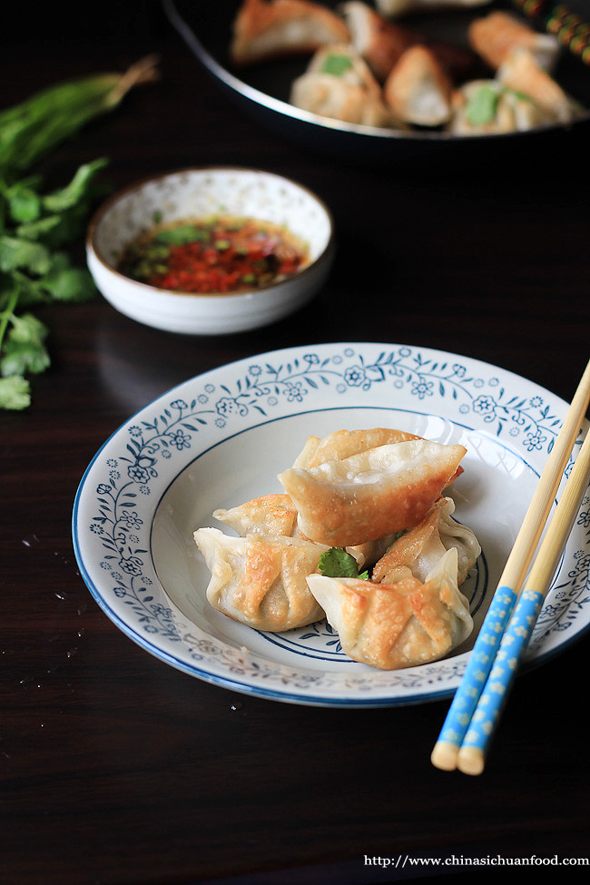 vegan pot stickers|ChinaSichuanFood